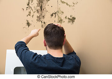 Man Pointing At Mold On Wall