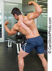 Rear view of a muscular man flexing