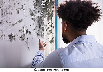 Man Looking At Mold On Wall