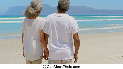 Rear view of active senior African American couple holding hands and standing on the beach 4k