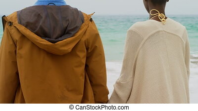 Rear view of African american couple standing with hand in hand on the beach 4k