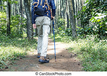Rear view of asian traveler man with backpack and trekking pole walking into the forest