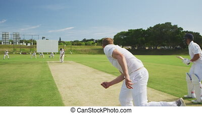 Rear view of cricket player throwing a ball - Rear view of a...