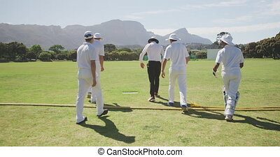 Rear view of cricket players walking on a pitch - Rear view ...