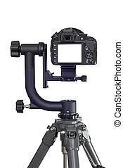Rear View of Digital Camera Showing Big Blank LCD Screen