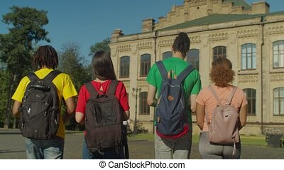 Rear view of diverse students walking after lesson