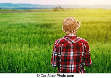 Rear view of female farmer standing in wheat field