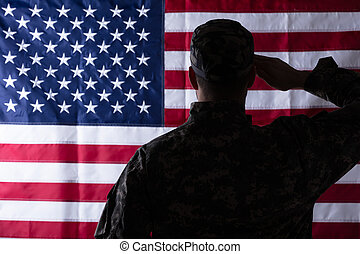 Military Man Saluting Us Flag