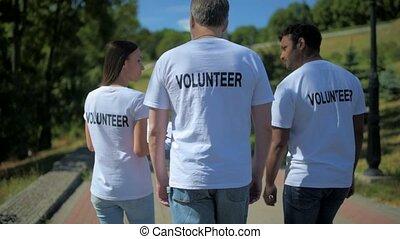 Rear view of multiethnic volunteers walking in the park