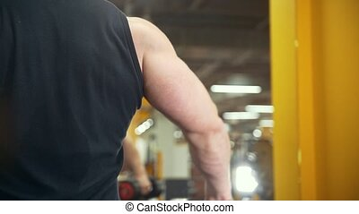 Rear view of muscular man lifts a dumbbell in a gym, close...