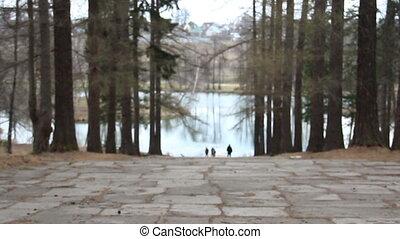 Romantic Couple Walking Through Autumn Woodland - Rear View...