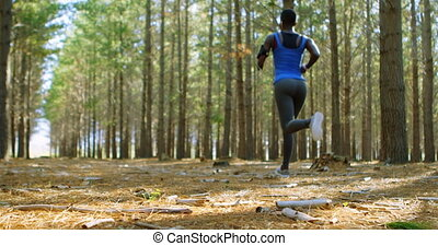 Woman jogging in the forest 4k - Rear view of Woman jogging...