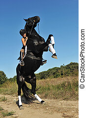 young woman and her beautiful black stallion rearing up