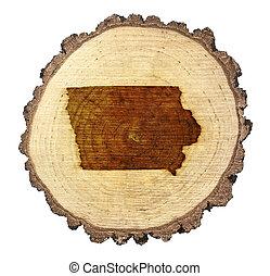 rebanada, onto), .(series), madera, (shape, iowa, branded