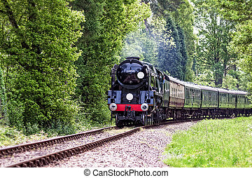 Rebuilt Bulleid Light Pacific No. 34059 steam locomotive near Kingscote Station