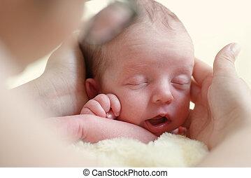 recem nascido, em, mãe, mãos