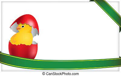 recem nascido, galinha