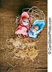 recem nascido, ovos