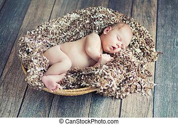 recem nascido, vime, bebê, cesta, dormir