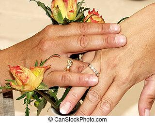 recentemente, lésbica, wed., par