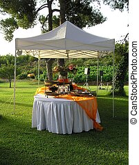 reception buffet, catering setup