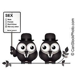 recherche, marché, sexe