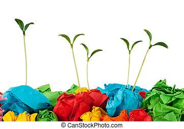 reciclaje papel, concepto, con, plantas de semilla, blanco