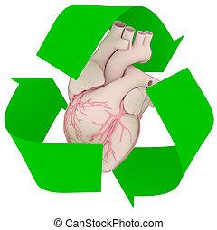 recicle, coração, símbolo, human