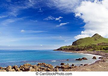 recife coral, baía