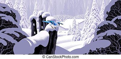 recinto, blu, ghiandaia