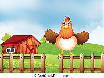 recinto, casa legno, indietro, sopra, gallina