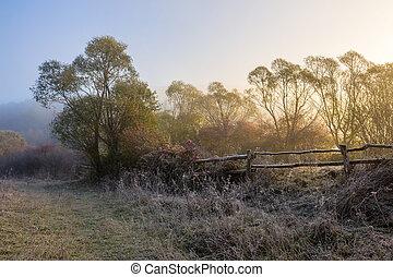 recinto legno, in, nebbia, su, congelato, prato, a, sunrize