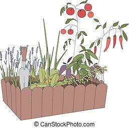 recipiente, com, crescendo, legumes, e, ferramentas