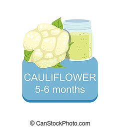 Recommended Time To Feed The Baby With Fresh Cauliflower Cartoon Info Sticker With Fresh Vegetable And Puree In Jar