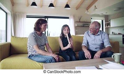 recorder., intérieur, jouer, girl, petit, personne agee, grands-parents