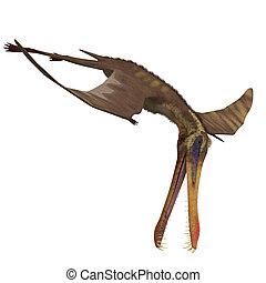 recorte, anhanguera, interpretación, encima, pterosaur., dinosaurio, trayectoria, sombra, blanco, 3d
