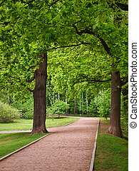 recreation area - Path in the Moscow city park