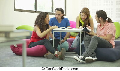 Recreational Learning - Four undergraduates studying in the...