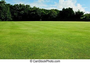 Recreational sport field background - Green short cut grass ...
