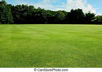Recreational sport field background - Green short cut grass...