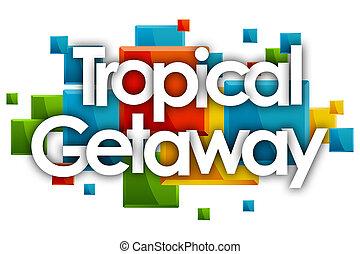 rectángulos, palabra, coloreado, fuga, tropical, plano de ...