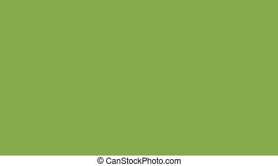 Rectangles on a green background