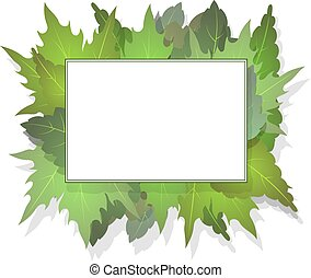 Rectangular frame for your design on a background of green leaves with shadow.