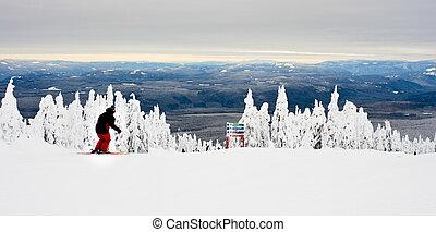 recurso, esquí, vista