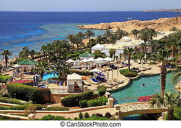 recurso, lujo, tropical, hotel, egypt.