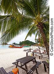 recurso, playa, turista