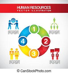 recursos, human