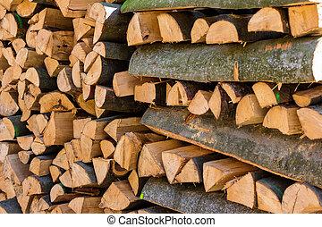 recut, troncos, árvore