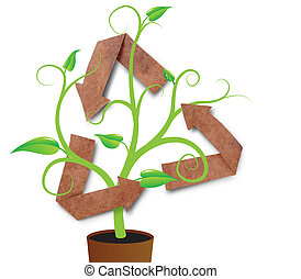 recycle symbol with young plant, isolated