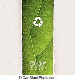 recycling, blad, vecto, gescheurd, symbool., textuur, papier, groene, onder